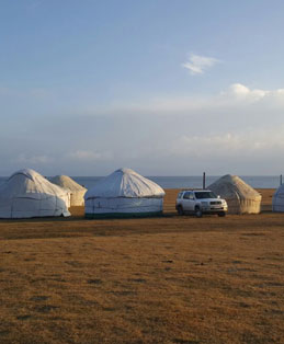 אוהל מגורים מקומי